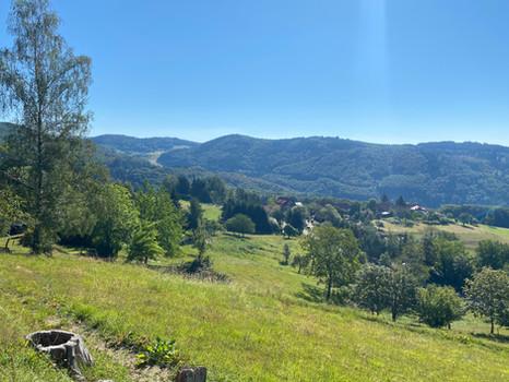 Der südliche Schwarzwald