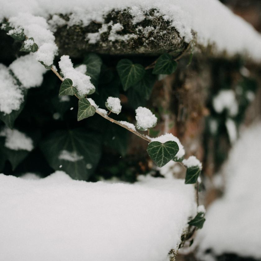 winter hochzeits idee