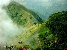 Shendurney Eco Tourism