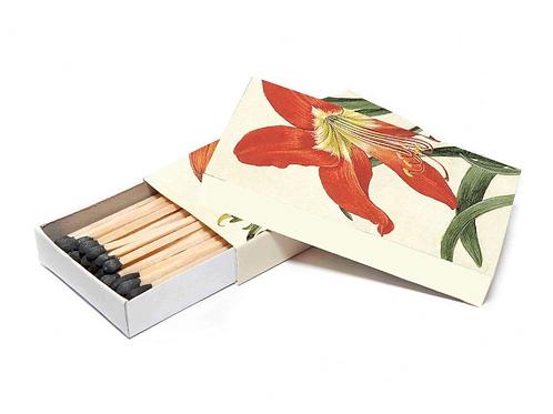 Art Series Matches - Amaryllis Flower
