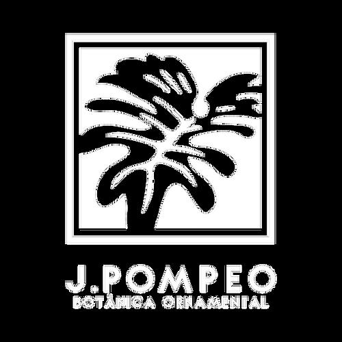 10 Pompeo.png