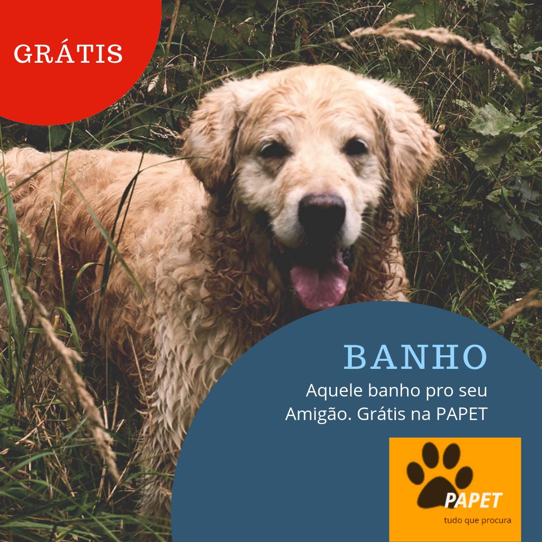BANHO_GRÁTIS