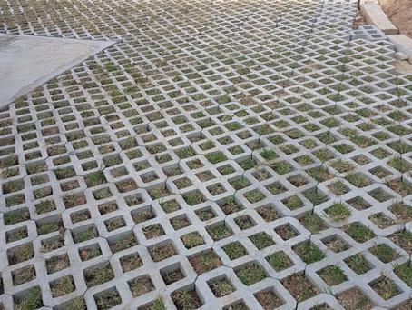 Como ter um gramado verde ?
