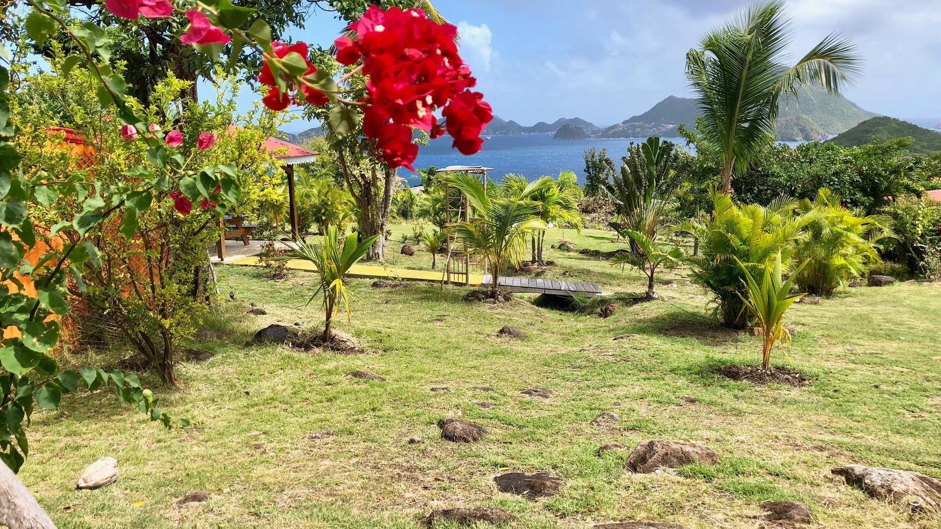 Jardin de la Résidence Coco d'Iles -  Les Saintes