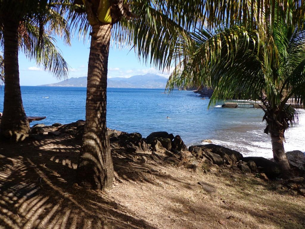 Grande Anse - Résidence Coco d'Iles -  Les Saintes