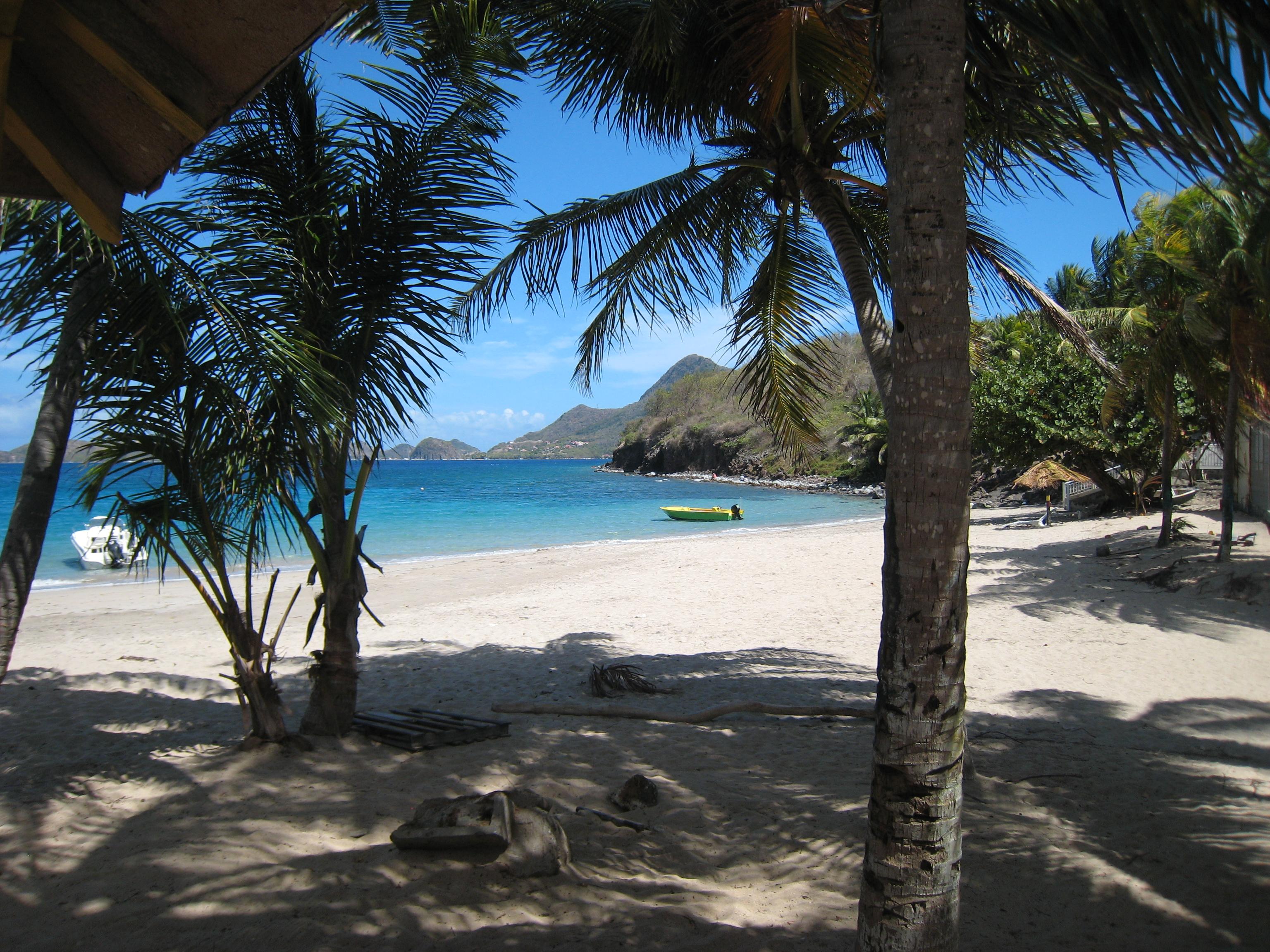 Plage de Grande Anse - - Résidence Coco d'Iles -  Les Saintes