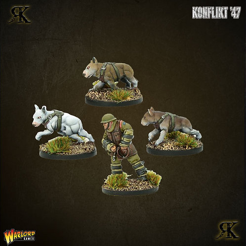 British War Dog Squad 1