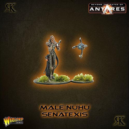Male Isorian NuHu Senatexis
