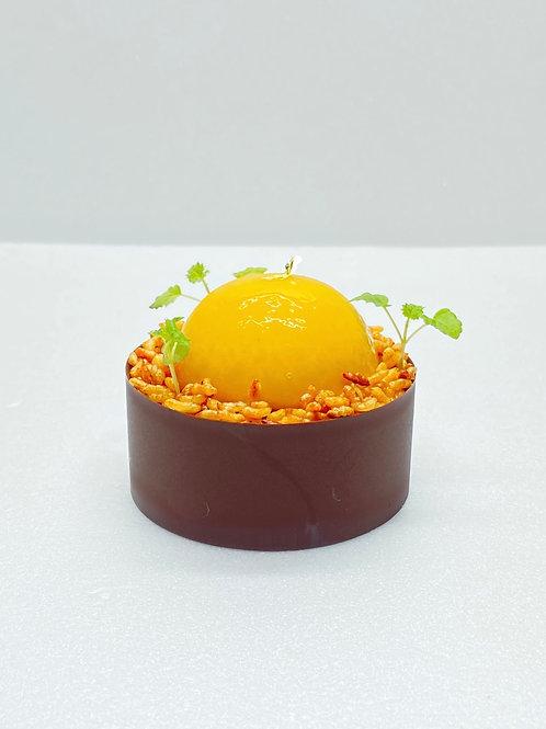 Chocolat 80 %, confit de clementine de Corse, crémeux aux baies roses