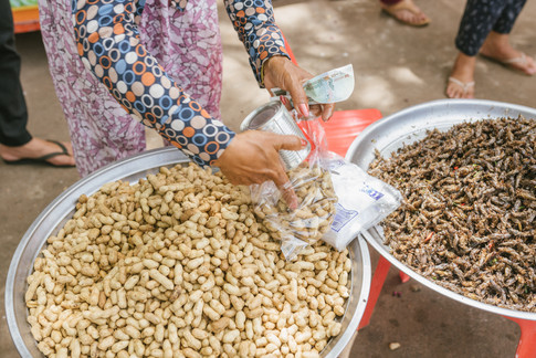 Insects selling in Downtown Kampong Chhnang, Cambodia