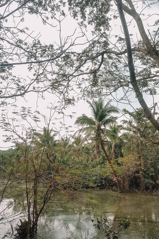 Sri Nakhon Khuean Khan Park And Botanical Garden - Bang Krachao - Bangkok's green lung