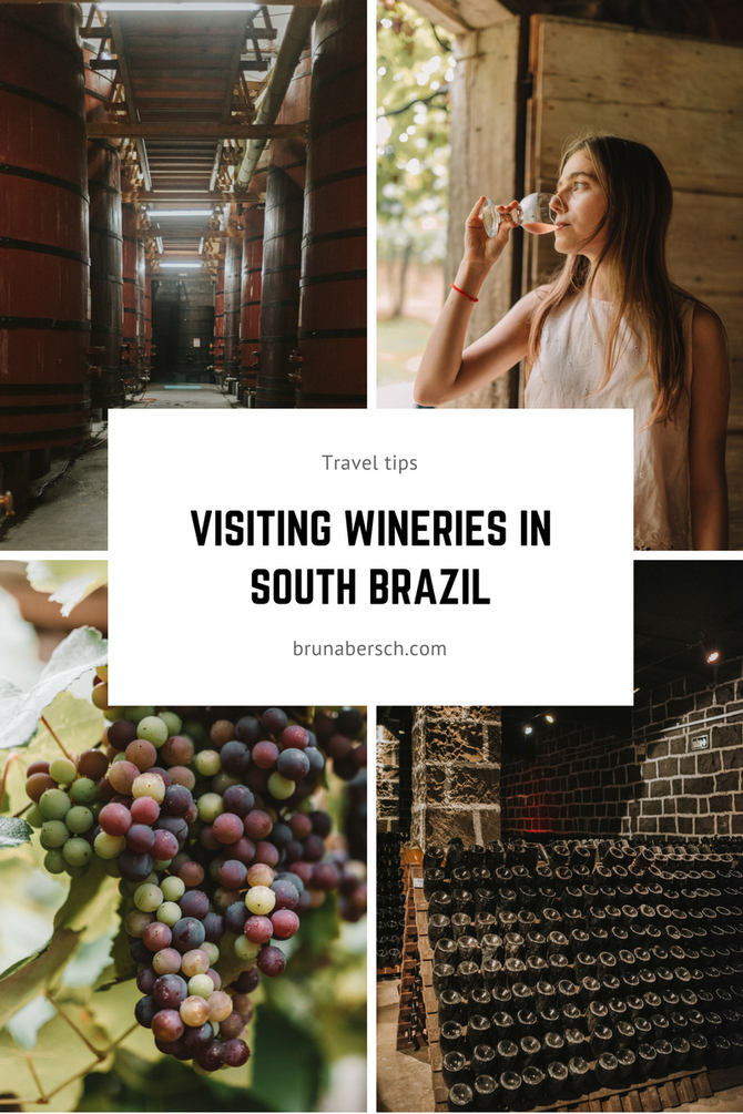 Visiting wineries in South Brazil