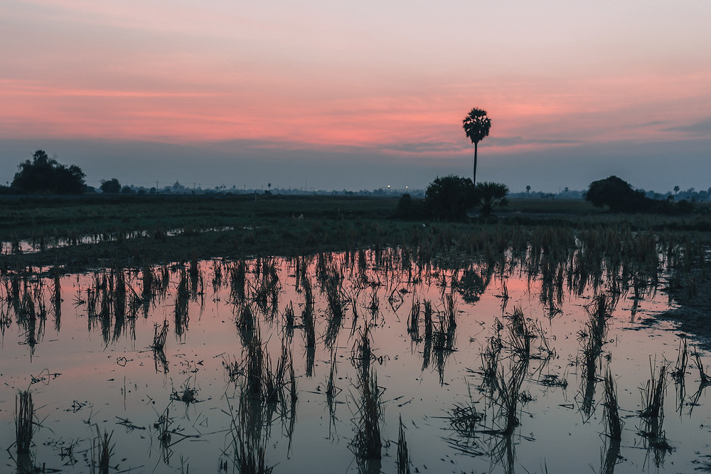 Sunset in Cambodia- Bruna Bersch Photography