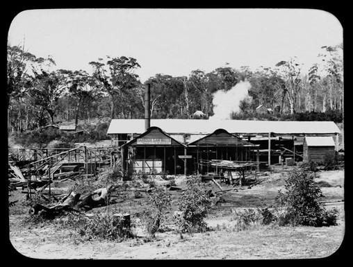 Sawmill,_Coffs_Harbour_(5040636850)_WikimediaCommons.jpg