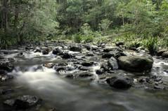 Bindarri_National_Park_(2663527956)_WikimediaCommons.jpg