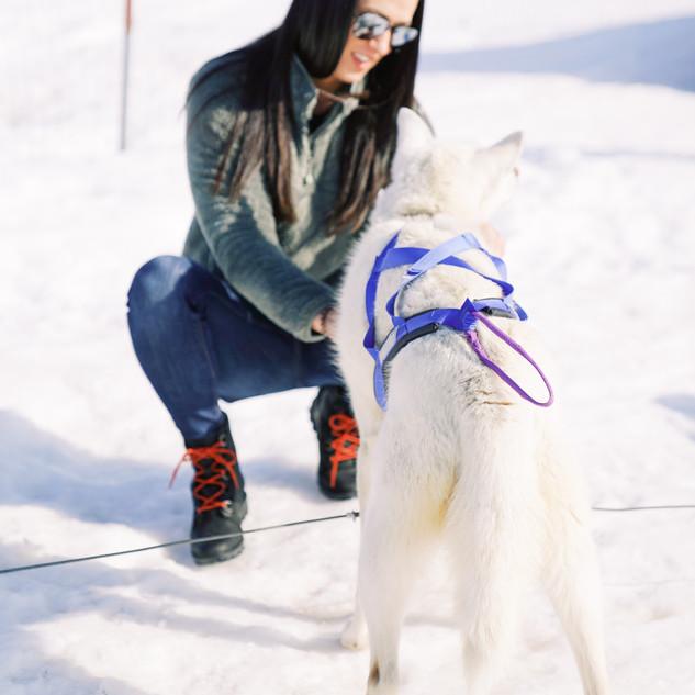 A woman petting a dog