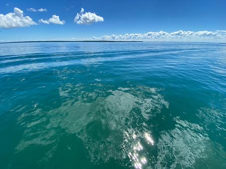 Point to La Pointe Swim!