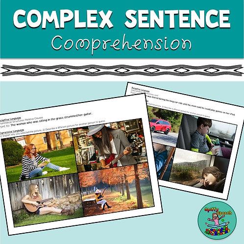 Complex Sentence Comprehension
