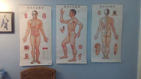 Scéma des points d'acupuncture