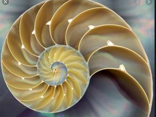 Intro to Fibonacci