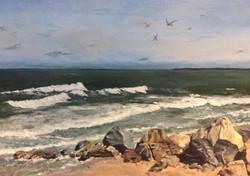 Darcy_Along the Shore
