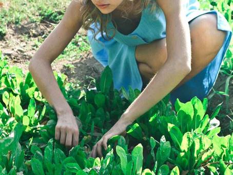 Kid-Friendly Quarantine Activity: Gardening!