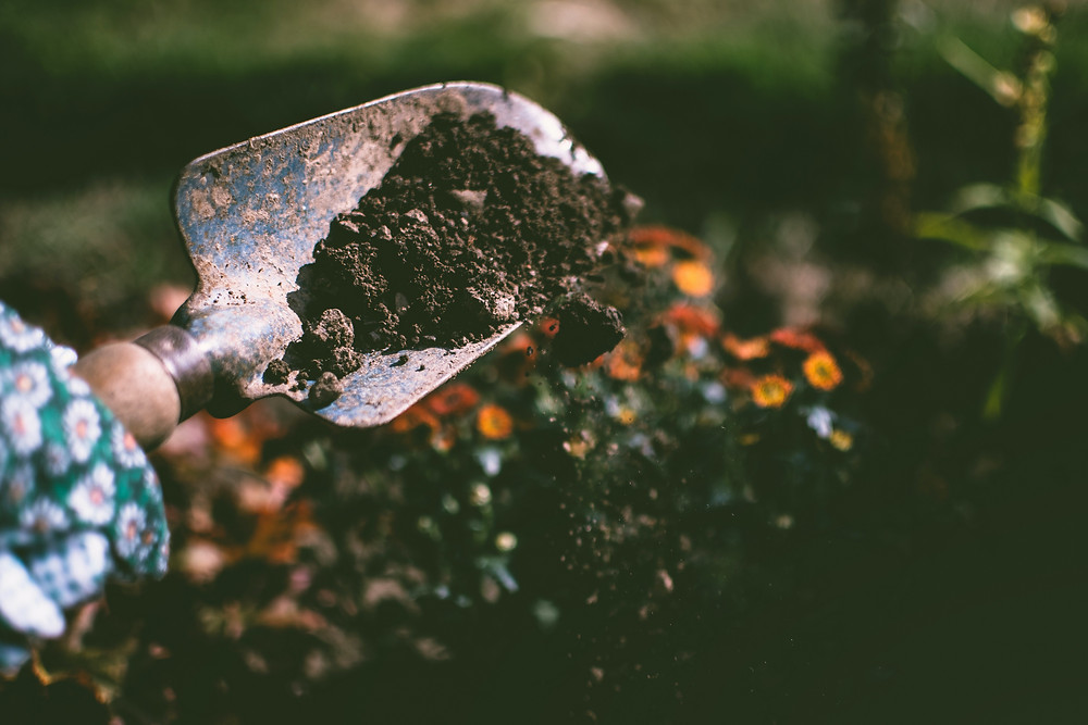 person-digging-on-soil-using-garden-shovel-1301856