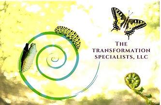 The transformation specialists llc.JPG