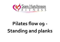 Pilates flow 09 standing and planks.jpg