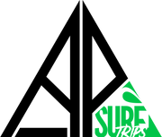 logo-APSurftrips.png