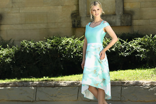 Dress with matching organza over blouse