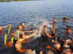 Amazon Pink Dolfin