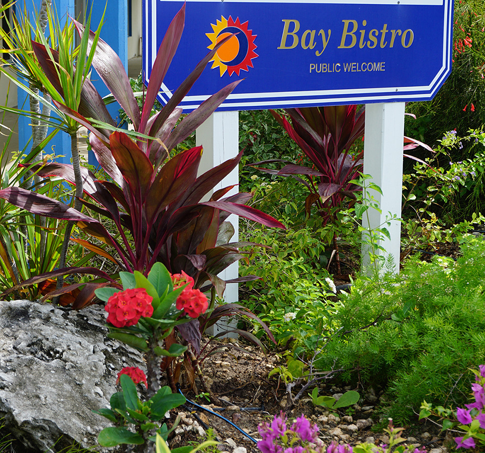 Sib garden sign.jpg
