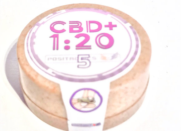 Positronics CBD+ 1:20 5 stk.