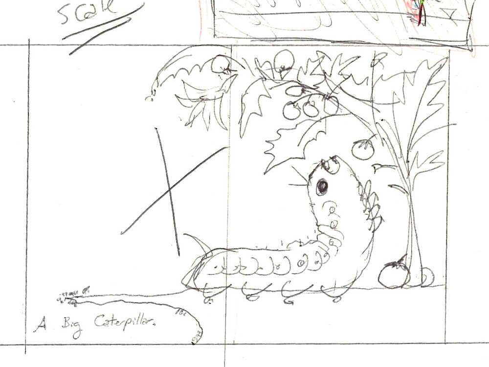 A Big Caterpillar Sketch