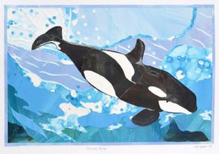 Ryan's Orca