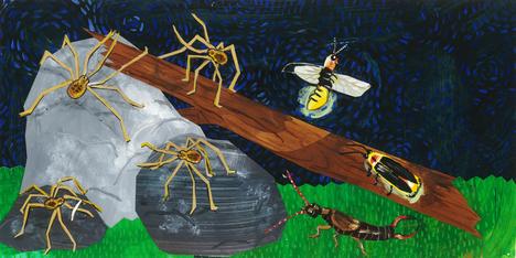 Don't Eat Flies
