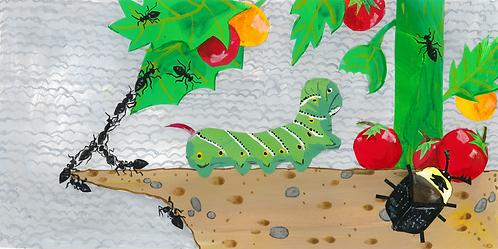 An Insect Alphabet - A Big Caterpillar