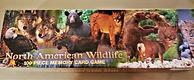 Wildlife Memory Game.jpg