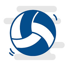 Icons-SV-TuR_Volleyball.jpg