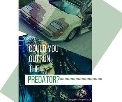 Could A Camo Wrap Crush The Predator?!