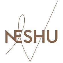 NES_Logo_RVB_edited_edited.jpg
