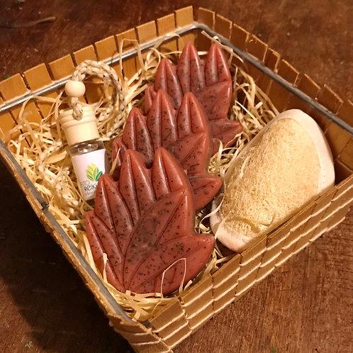 Mini kit de sabonetes de ervas imantados com Reiki