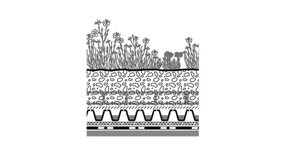 ZINCO  Végétalisation extensive
