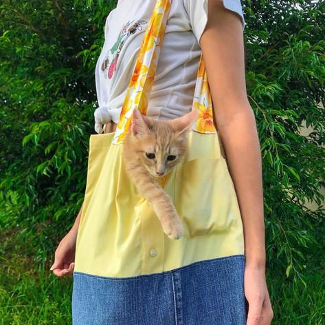 camila's kitty!