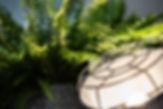 detail lamp + plant.jpg