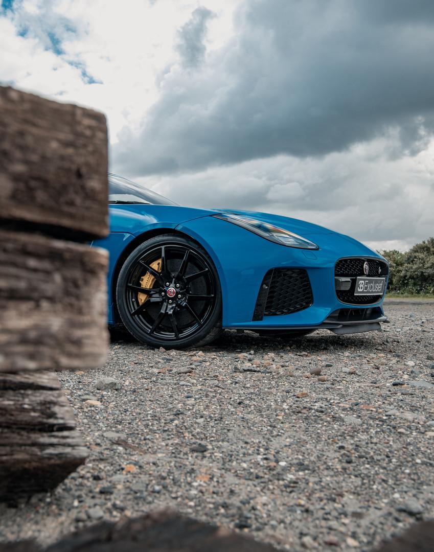 Jaguar 8.jpg