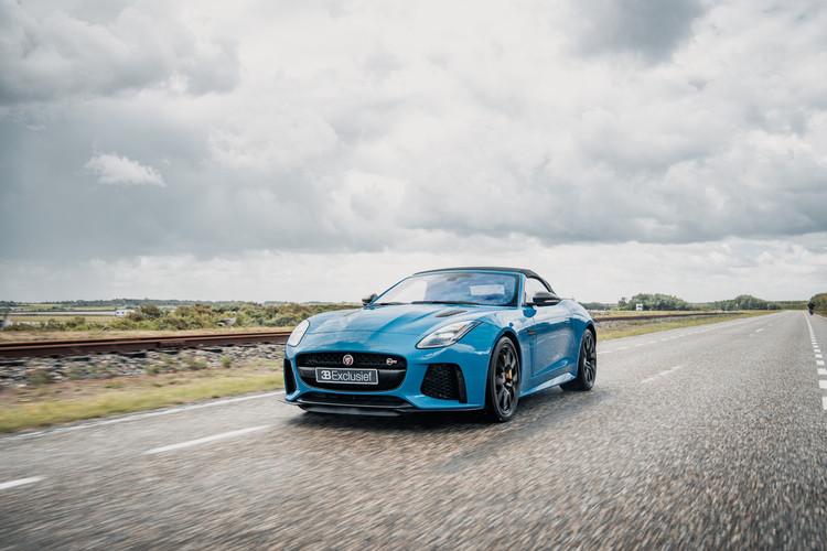 Jaguar 15.jpg