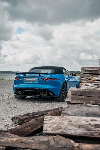 Jaguar 5.jpg