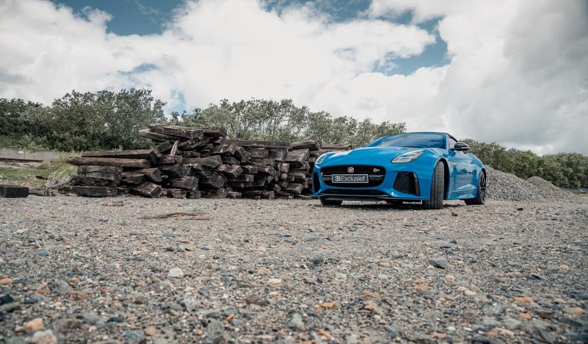 jaguar 24.jpg